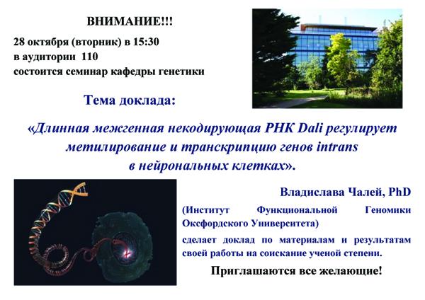 28 октября 2014 г(вторник) в 15:30 в аудитории  110 состоится семинар кафедры генетики. <br> Тема доклада: «Длинная межгенная некодирующая РНК Dali регулирует метилирование и транскрипцию генов intrans в нейрональных клетках».<br>  Владислава Чалей, PhD (Институт Функциональной Геномики Оксфордского Университета) сделает доклад по материалам и результатам своей работы на ученую степень.<br>  Приглашаются все желающие!